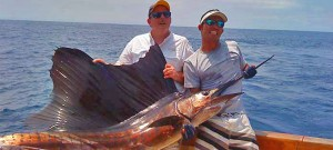 Sailfish fished with the Alpha Mike Sportfishing Crew in Costa Rica